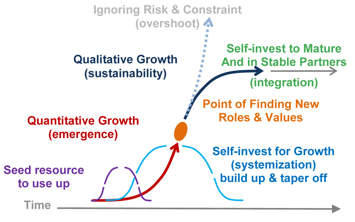 succession from Quantitative to Qualitative growth